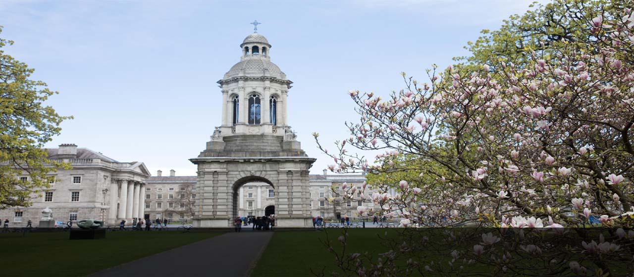Dissertation help ireland analysis
